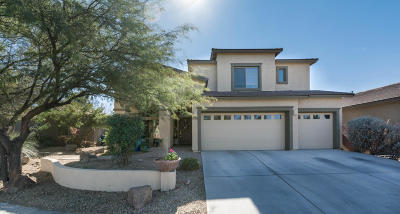 Sahuarita Single Family Home For Sale: 854 E Gunsight Mountain Place