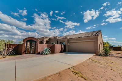 Sahuarita Single Family Home For Sale: 18198 S Wheatland Way