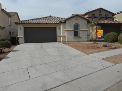 Sahuarita Single Family Home For Sale: 15744 S Camino Muesa