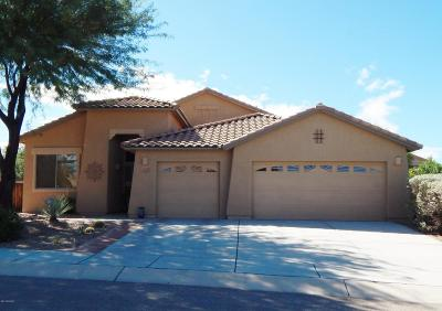 Sahuarita Single Family Home For Sale: 1102 E Mud Spring Canyon Lane