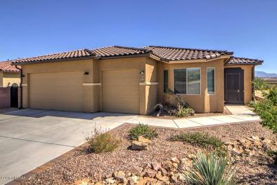 Green Valley Single Family Home For Sale: 836 N Camino Cerro La Silla