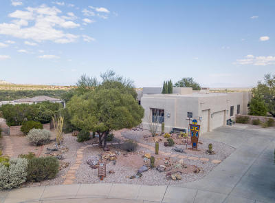 Pima County Single Family Home For Sale: 4554 S Moon River Place