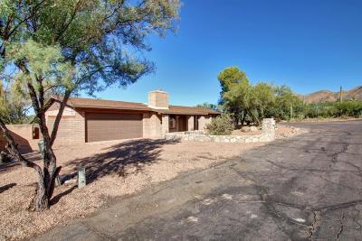 Tucson Single Family Home For Sale: 6491 N Burro Creek Place