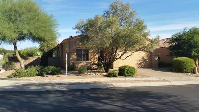 Tucson Single Family Home For Sale: 6314 N Via Lomas De Paloma