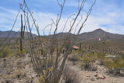 Tucson Residential Lots & Land For Sale: 6900 W El Camino Del Cerro
