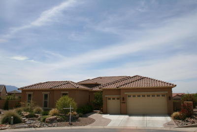 Oracle Single Family Home For Sale: 31996 S Bayberry Court