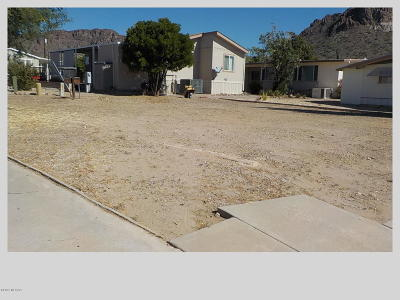 Tucson Residential Lots & Land For Sale: 5334 W Lazy S Street #469