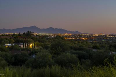 Tucson Single Family Home For Sale: 4616 N Avenida Del Cazador