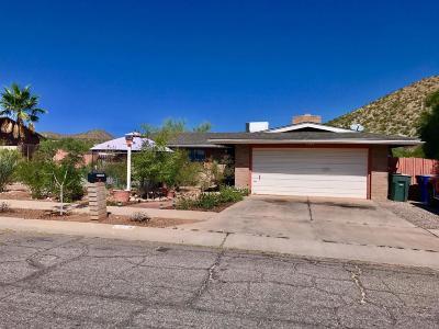 Tucson Single Family Home For Sale: 1366 S Desert Crest Drive