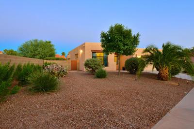 Tucson Single Family Home For Sale: 7707 E Park View Drive
