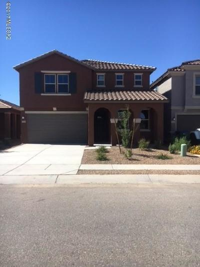 Sahuarita Single Family Home For Sale: 13840 S Camino Acelga