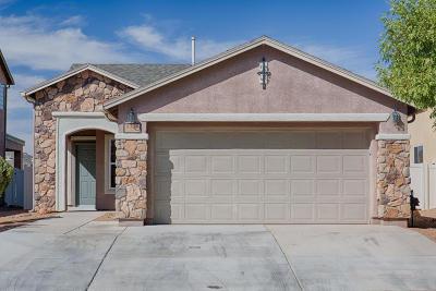 Tucson Single Family Home For Sale: 8394 W Razorbill Drive