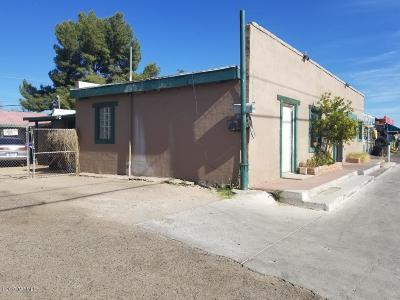 Tucson Single Family Home For Sale: 4633 S 12th Avenue