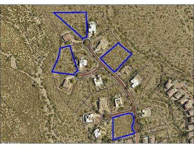 Residential Lots & Land For Sale: 9024 E Prairie Sage Court #1