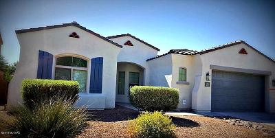 Sahuarita Single Family Home For Sale: 478 E Via Puente De Las Rosas