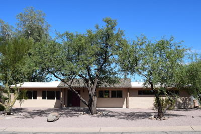 Tucson Single Family Home For Sale: 8809 E Harborage Drive