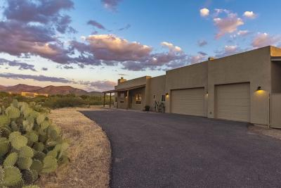 Single Family Home For Sale: 9477 S Old Soldier Trail