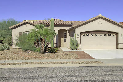 Marana Single Family Home For Sale: 9681 N Arch Canyon Place