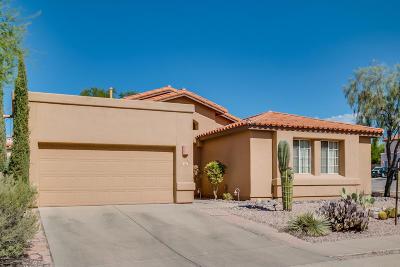 Tucson Single Family Home For Sale: 204 N Fenceline Drive