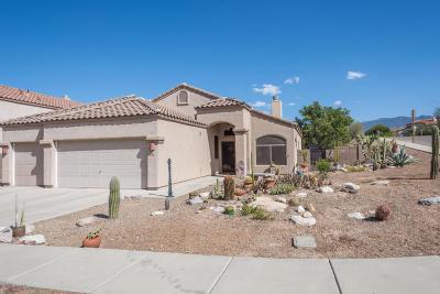 Tucson Single Family Home For Sale: 940 N Western Ridge Trail