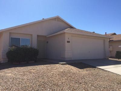 Tucson Single Family Home For Sale: 7028 E Typhoon Flyer Way