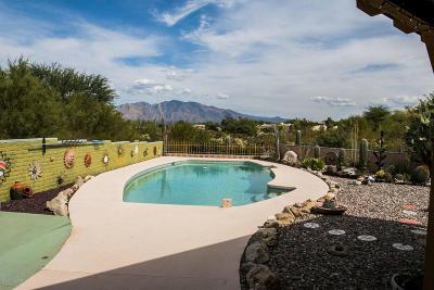Tucson Single Family Home For Sale: 5080 W Camino De Girasol