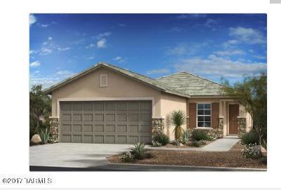 Tucson Single Family Home For Sale: 2134 W Ephesus Court