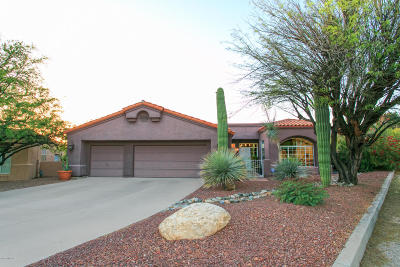 Pima County Single Family Home For Sale: 3785 N Creek Side Place
