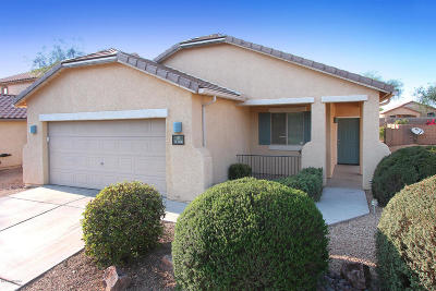Marana Single Family Home For Sale: 11366 W Massey Drive