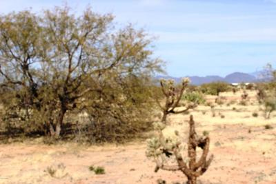 Residential Lots & Land For Sale: 8888 S Marstellar Road #E