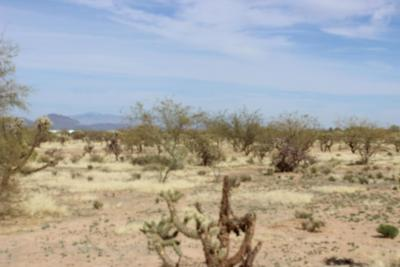 Residential Lots & Land For Sale: 8766 S Marstellar Road #E