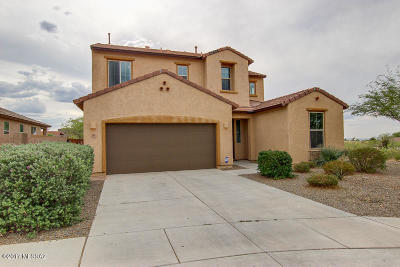 Vail Single Family Home For Sale: 574 S Desert Haven Road