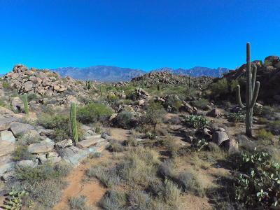 Tucson Residential Lots & Land For Sale: 1481 W Tortolita Mountain Ci W #281