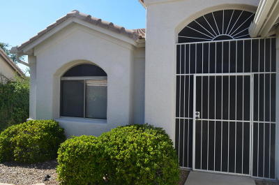 Tucson Single Family Home For Sale: 37884 S Cypress Court