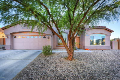 Tucson Single Family Home For Sale: 39986 S Mountain Shadow Drive