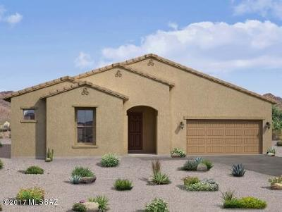 Sahuarita Single Family Home For Sale: 1320 E Stronghold Canyon Lane
