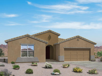 Sahuarita Single Family Home For Sale: 1231 E Stronghold Canyon Lane