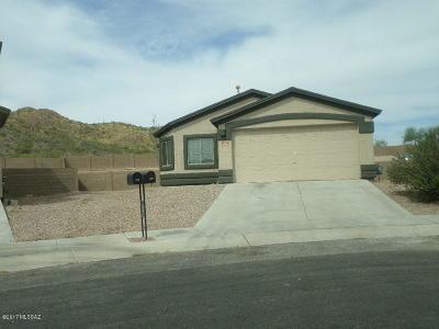 Tucson Single Family Home For Sale: 7292 S Avenida De La Palmar