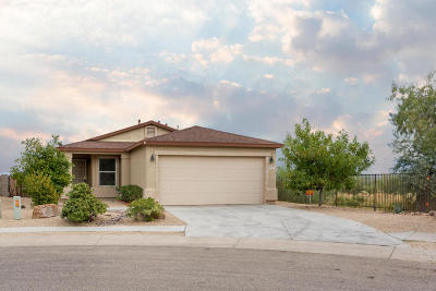 Sahuarita Single Family Home For Sale: 1295 W Placita Tecolote Mesa