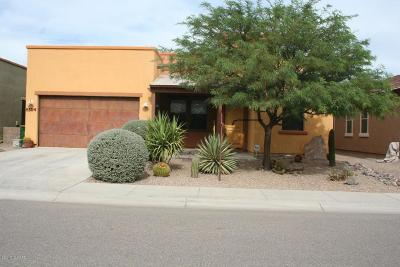 Tucson Single Family Home For Sale: 8354 N Mountain Stone Pine Way