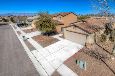 Tucson Single Family Home For Sale: 6207 S Earp Wash Lane