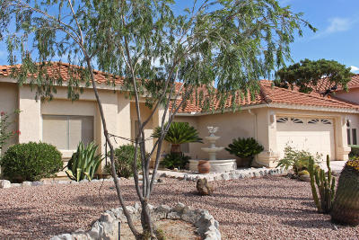 Tucson Single Family Home For Sale: 556 W Paseo Rio Grande