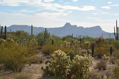 Residential Lots & Land Active Contingent: 10392 N Coyote Lane