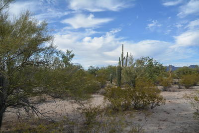 Residential Lots & Land For Sale: 10376 N Coyote Lane