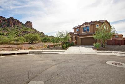 Tucson Single Family Home For Sale: 4243 W Beehive Peak Court