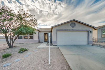 Tucson Single Family Home For Sale: 2042 S Bird Song Drive