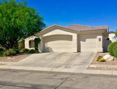 Tucson Single Family Home For Sale: 9641 E Waters Edge Place