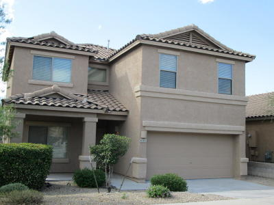 Tucson Single Family Home For Sale: 8382 S Hunnic Drive
