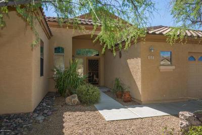 Pima County Single Family Home For Sale: 5115 W Wild Burro Spring Drive