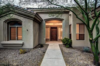 Tucson Single Family Home For Sale: 2521 N Lightning A Drive